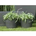 Eco bloempot Surprise, groen kunststof, 25cm-D&M-02