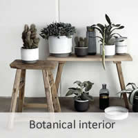 Botanical interior